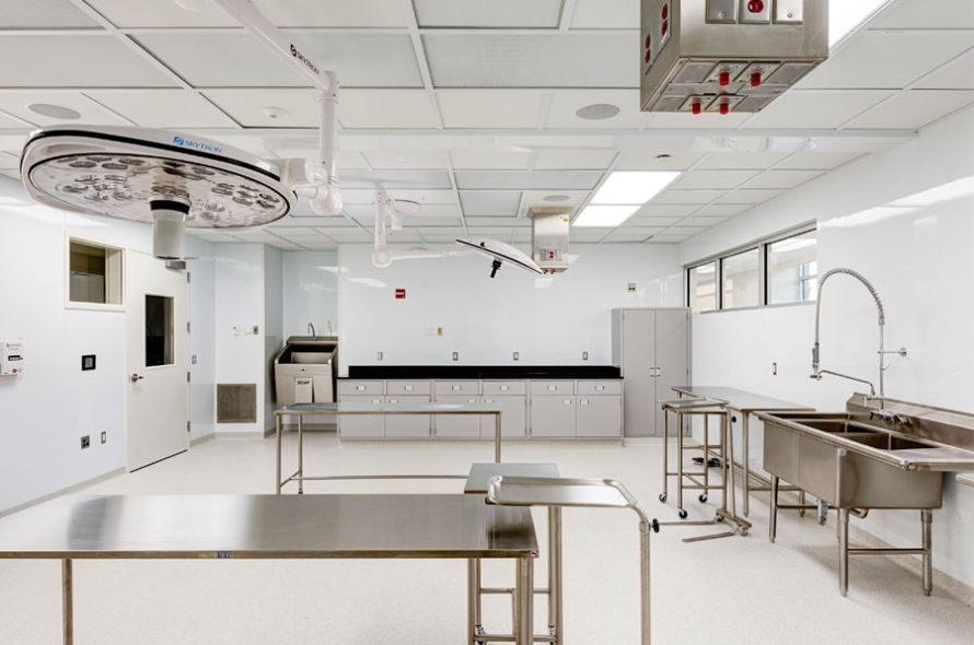 Image of LifeNet Health Institute of Regenerative Medicine