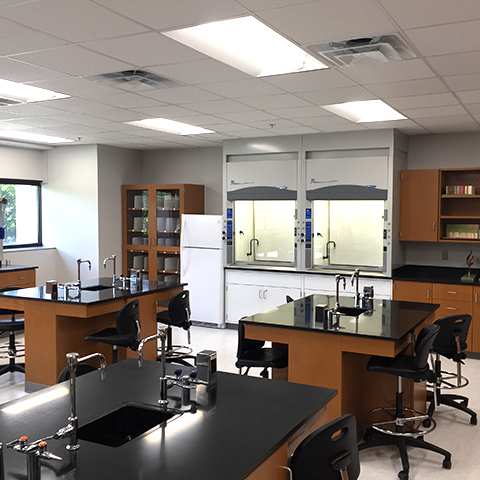 georgiadis hall lab